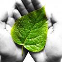 Convicción en lo sostenible